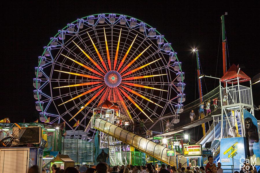 Feria-de-Septiembre-de-Murcia-13